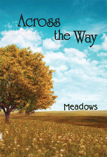 Across the Way: Meadows
