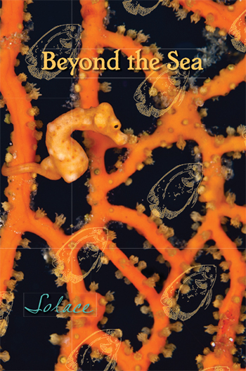 Beyond the Sea: Solace