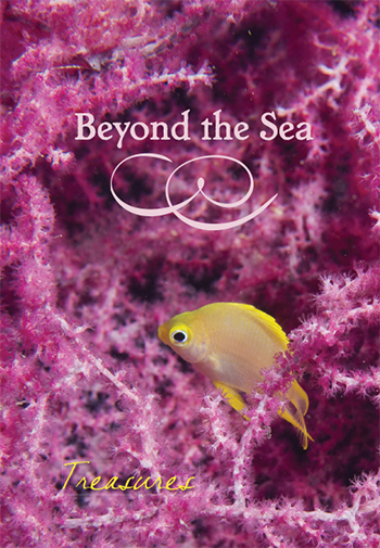 Beyond the Sea: Treasures