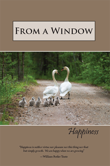 From a Window: Happiness