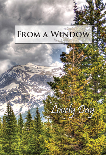 From a Window: Lovely Day