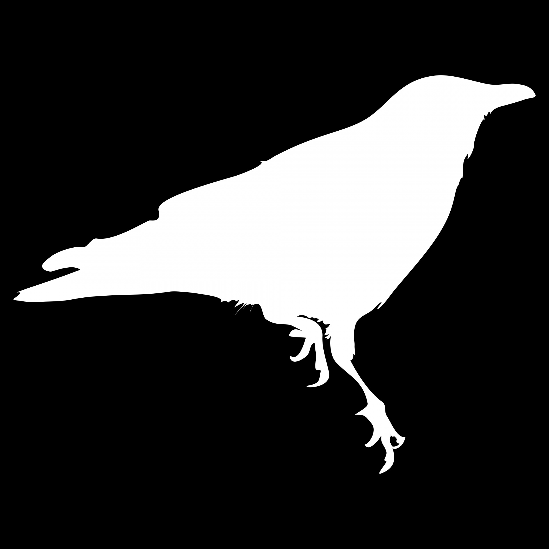 Shade Of The White Crow
